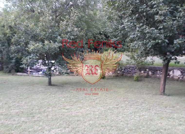 Дом на продажу с большим участком земли в Даниловграде, купить дом в Центральный район