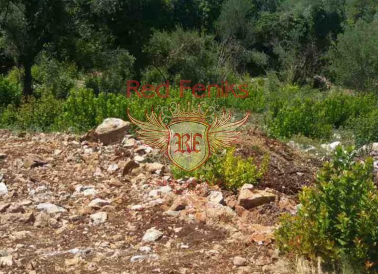 Отличный участок в Кримовице, купить землю в Регион Будва